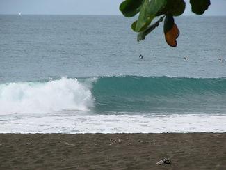 Surf lessons Panama City Beach, Paddle board Rentals PCB, Paddle board rentals Panama City Beach, PC