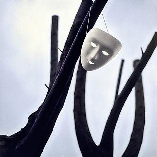 Masque Psychothérapie-Dijon.fr