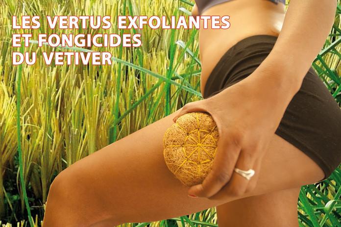 Les vertus exfoliantes et fongicides du vetiver