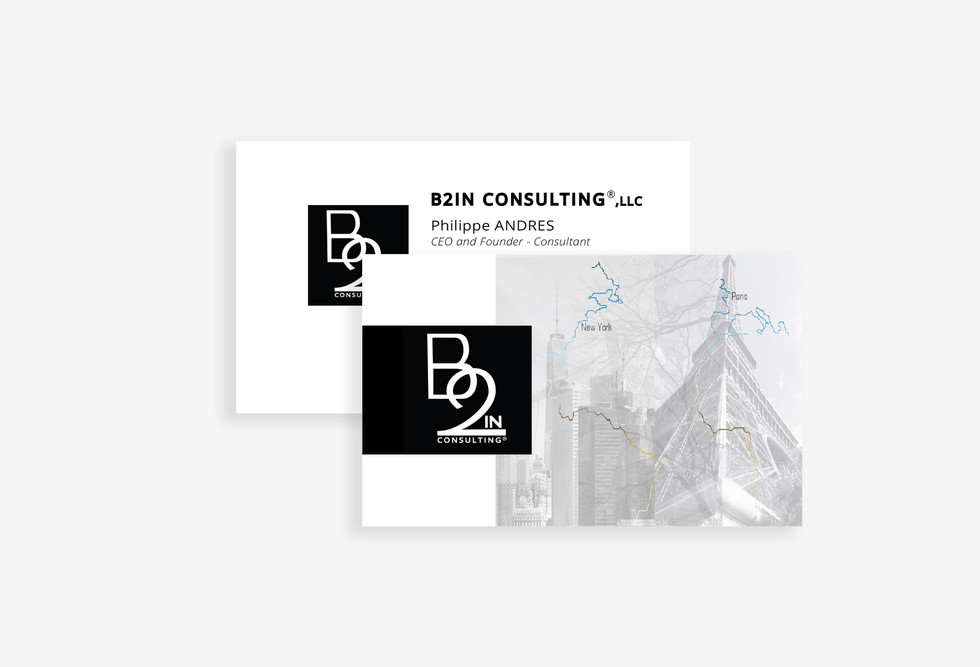 Anne Vandycke for B2In Consulting Presen
