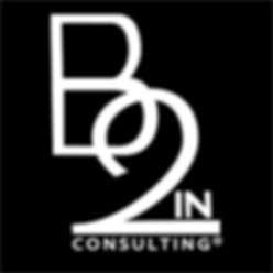 B2In®_Consulting.png