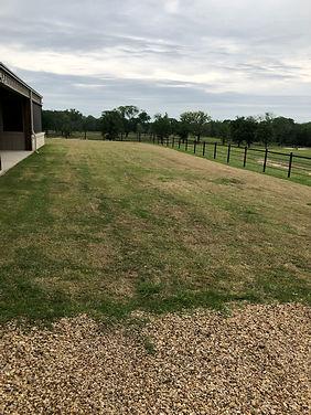 Lawn needing Maintenance & Landscaping.j