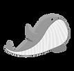 tortues de mer et baleines à madagascar, nosy be, séjour à nosy be, voyage à madagascar, voyage à nosy be, nosy iranja, diego suarez, tsingy, parc de lokobé