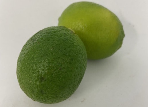 Limes X2