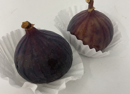 Figs X2