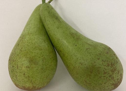 Pears X2