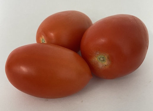 Plum Tomatoes 500g