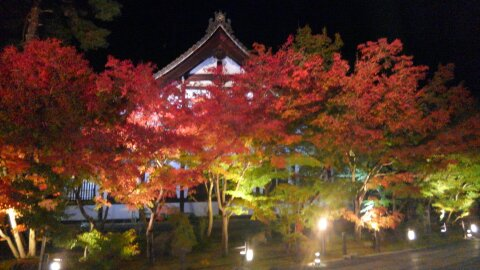 日本の四季(秋)