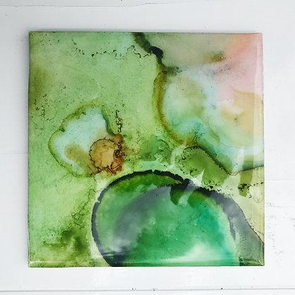 Coasters - set of 4 (seaweed)