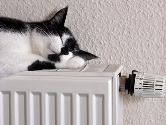 Отопление включили в 48 муниципалитетах Ростовской области