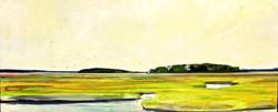 Farnhams Marsh