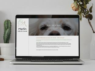 Merlin_Website.jpg