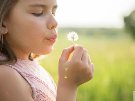 Séance photo Enfant dans un champ de fleurs au coucher du soleil - Montrevel en Bresse - Ain