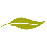 Morgan Pollard Logo leaf square.png