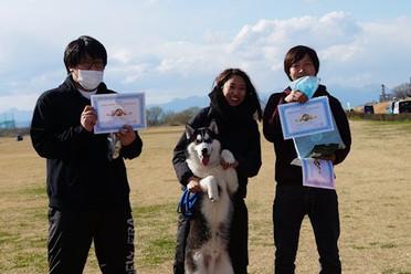 award-1dog-mutt.JPG