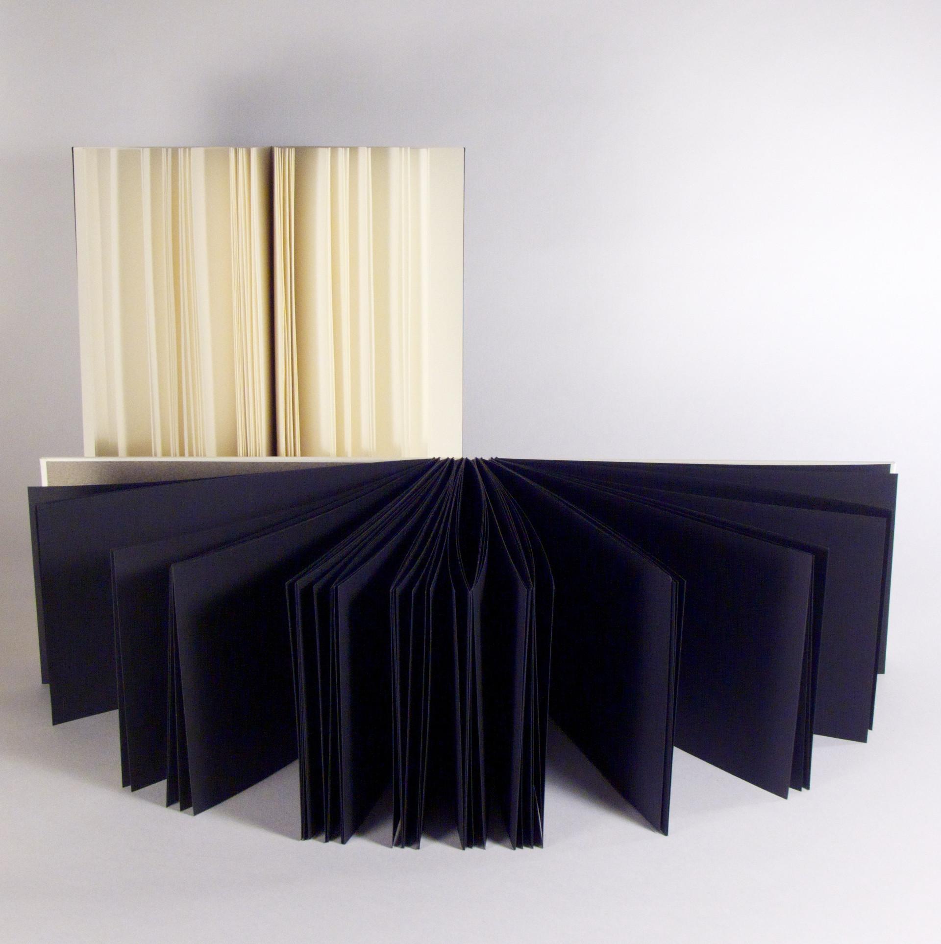 Duotone #3 (2010) - Interior