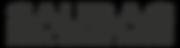 2015.01.29 16.04.28 - SAUBAG LOGO + DSD