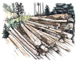 WEB-Logs