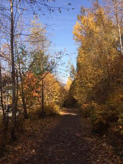 Fall Break - Nelson BC