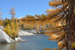 Enchantments Ultra Day Hike