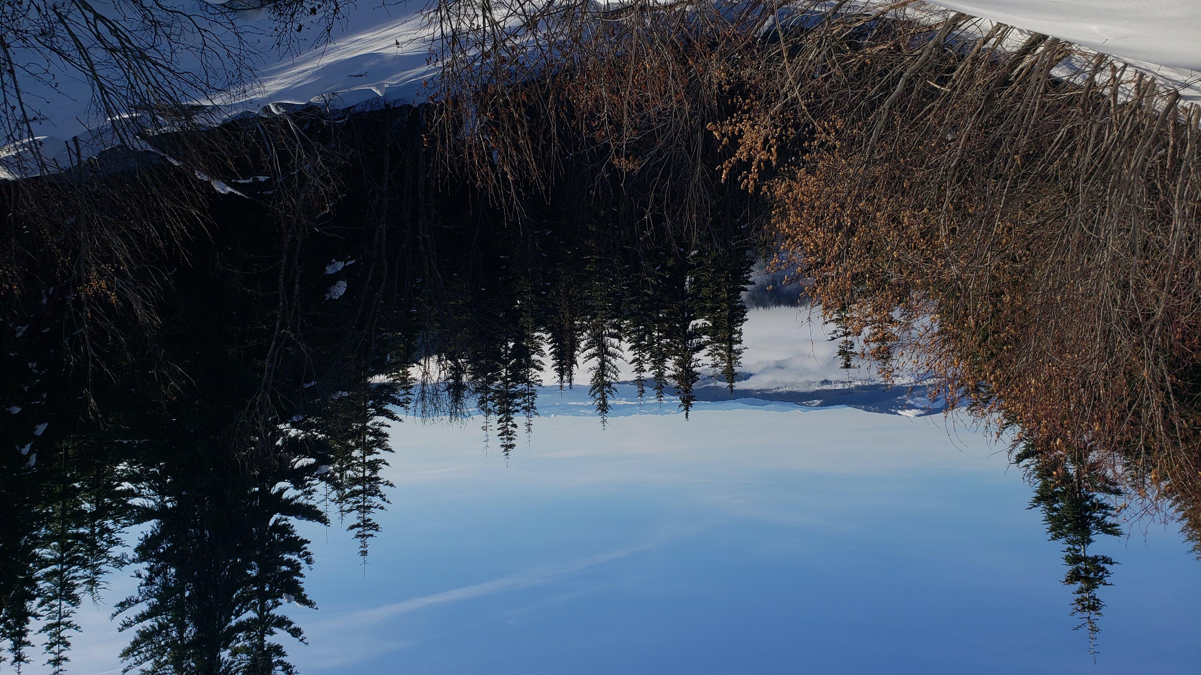 Mt Spokane XC Ski Trip