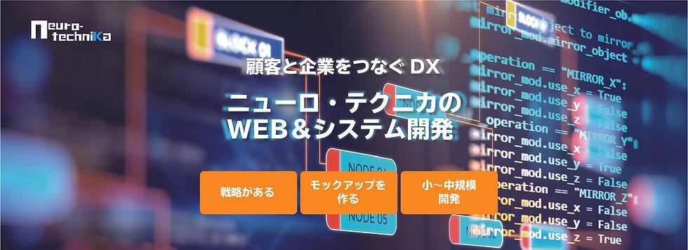 WS_DX-100.jpg