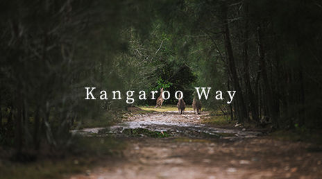 kangaroo way