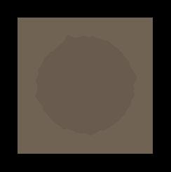 SWS Emblem.png