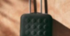 Cropped Black Luggage