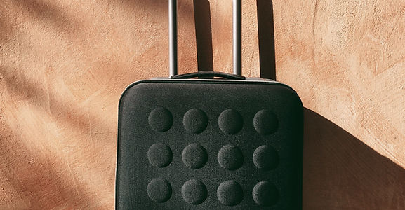 Cropped Black Luggage