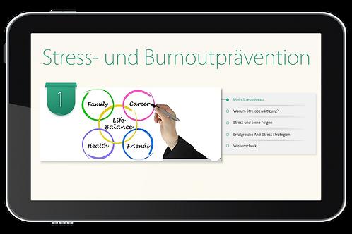 Stress- und Burnoutprävention (Onlinekurs)