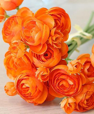 Ranunculus Flower.jpg