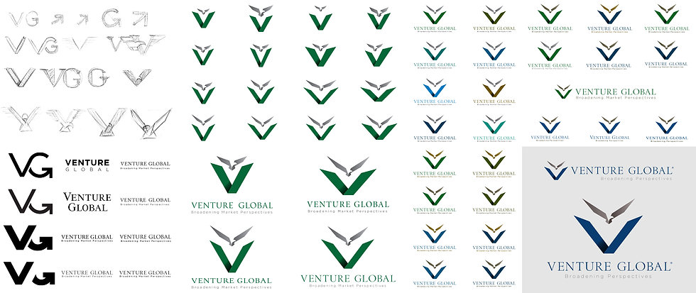 Venture_Global_Process.jpg