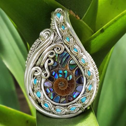 The latest_)_Ammonite shell with paua sh