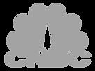 cnbc-logo-gray.png