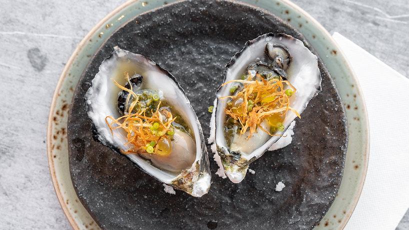 oyster_20210210.jpg