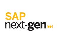 Sap Next-gen.png