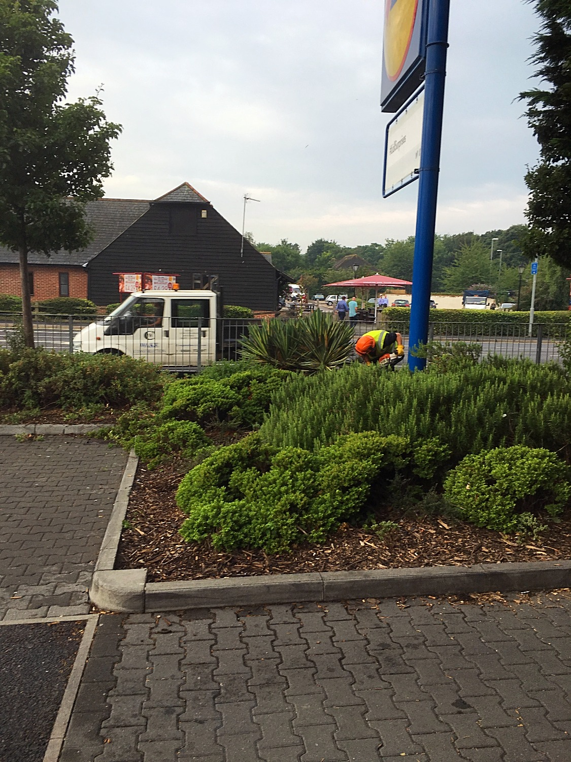 Greenscape working for Lidl