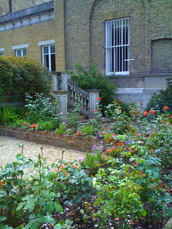 Navel garden