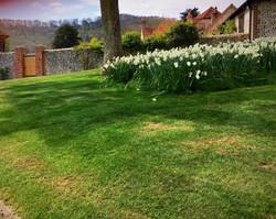 Private garden maintenance
