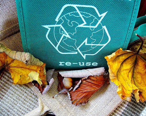recycle-g4322ce68e_1920.jpg