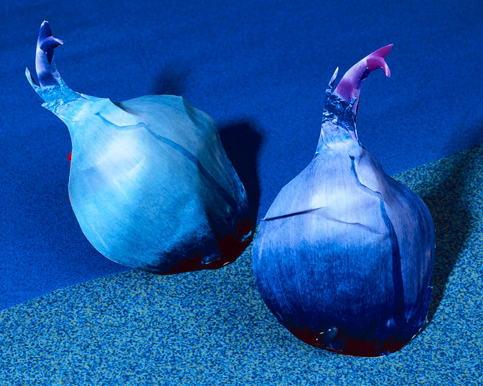 Daniel Gordon, Onions.jpg