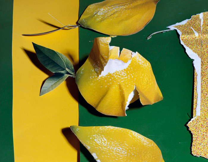 Daniel Gordon, Lemon.jpg