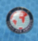 LAPEL PIN -INT'L  ($2.25 ea).JPG