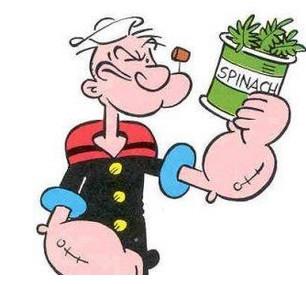 spinach อ่านให้ถูกว่าอย่างไร