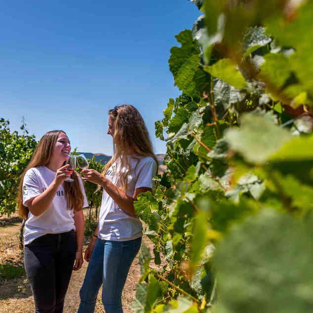 Girls enjoying NZ finest wine.jpg