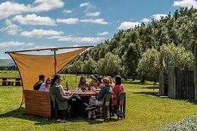 waipara wine tour at fiddler's green