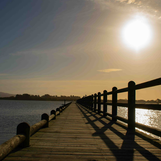 Christchurch estuary by @belenrada