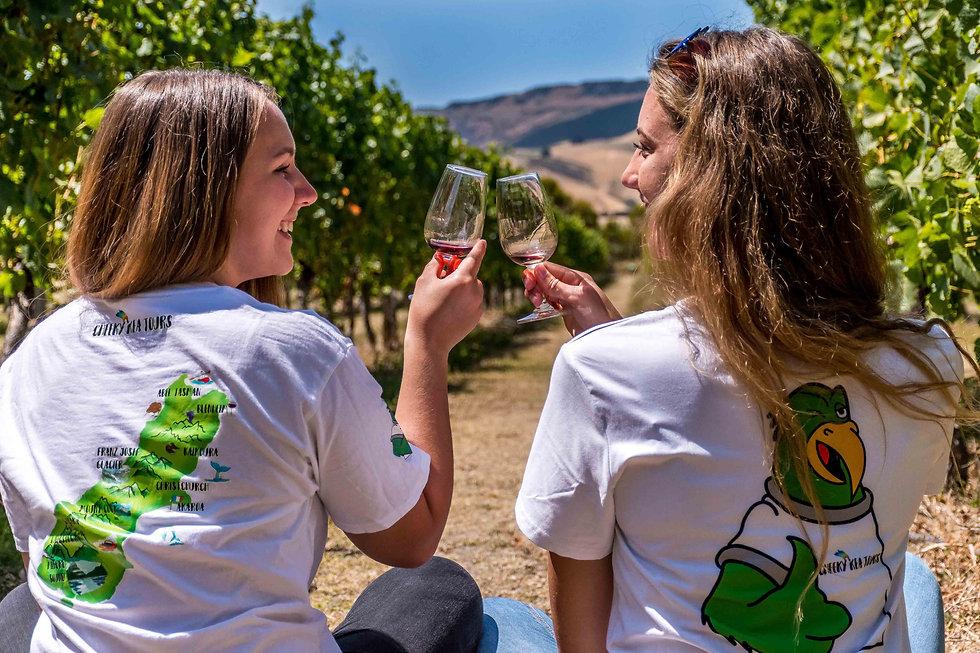 best wine tours from christchurch.jpg