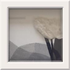 Black & White VI